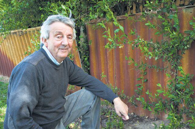East Cannington resident Desmond Bowers wants tougher asbestos policies from the city. Photograph — Matt Devlin.