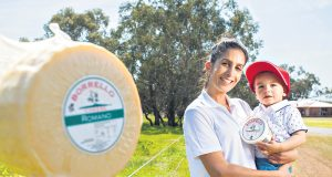 Maree Lemme and nephew Vincent Wilson made up the third and fourth generation of cheese makers at Borrello Cheese in Oakford. Photograph — Matt Devlin.