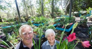 Barry and Lorraine Young would hold the annual Amanda's memorial garden fete this month. Photograph — Matt Devlin.