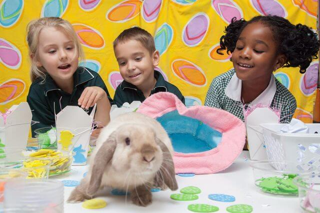 Preprimary students Rio Foster, Michael Penny and Sephtricia Newman show Fella their Easter themed arts and crafts. Photograph — Matt Devlin.