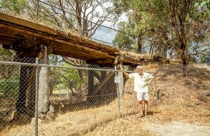 Byford resident Peter Godden is disappointed the Millbrace Bridge will be demolished. Photograph — Kelly Pilgrim-Byrne.
