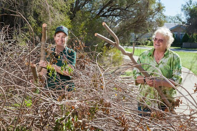Jen Francis from Armadale Gosnells Landcare and Friends of Mary Carroll Wetland coordinator Unice Robinson with a problem tree. Photograph — Matt Devlin.